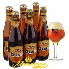 Sét 6 chai: Bia Bush Amber Triple 12% – Bia Bỉ ( 330 ml)