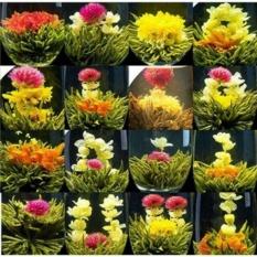 Trà Tân Long Châu 15 viên 15 dáng hoa ( trà nở hoa)