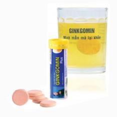 Viên sủi cao cấp GINKGOMIN Plus ( Tuýp 10 viên )