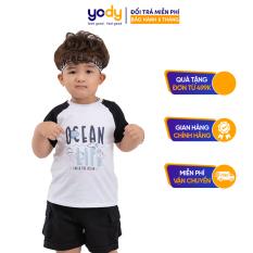Áo thun trẻ em, áo thun cho bé chất liệu cotton thoáng mát – KID4238