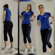 Bộ Đồ Tập Thể Thao Nữ Quần lửng Áo dài Tập Gym, Tập Yoga Thời Trang Cao Cấp