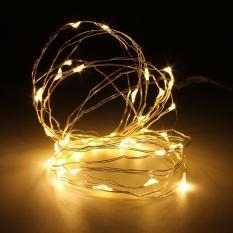 Đèn LED trang trí Dây đồng dài 2m 20 bóng kèm Pin