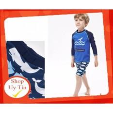 [Lấy mã giảm thêm 30%]Bộ đồ bơi dành cho bé trai Blue Dophin