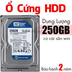 Ổ cứng HDD máy tính bàn WD 250GB Cài sẵn hệ điều hành Bảo Hành 2 Năm