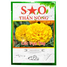 Hạt giống hoa Cúc Vạn Thọ – Sao Thần nông