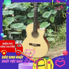 đàn guitar acoustic cho người mới tập chơi GV650