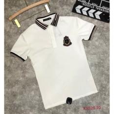 Áo thun polo nam Cổ Đệt Nâu CG, chất liệu da cá sấu, phong cách thể thao, 2 màu trắng đen, full size M L XL XXL từ 35-90kg