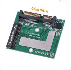 Bo Chuyển Đổi mSATA SSD Sang SATA 2.5 6.0gps Chuyên Dụng