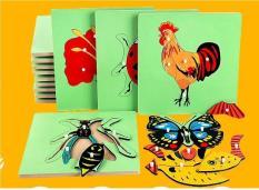 Combo 5 tranh ghép hình giáo cụ Montessori