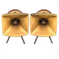 Bộ 2 loa treble kèn họng đúc nhôm BX PT6