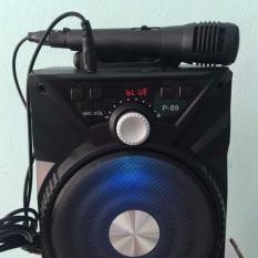 (Tặng mic) LOA KARAOKE P88,P89 DÒNG KIOMIC HÀNG CHUẨN.