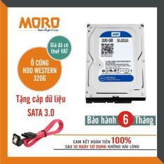 Ổ cứng HDD WD Blue 320GB – Nhập khẩu từ Nhật Bản, Hàn Quốc – Bảo hành 6 tháng
