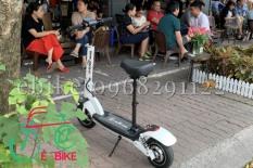 Xe scooter điện mini mẫu mới (full giảm xóc)