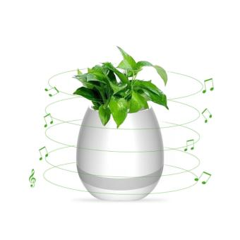 Bình trồng cây phát nhạc kết hợp loa Bluetooth, kiêm đèn ngủ