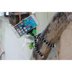 Combo chân máy ảnh bạch tuộc và đầu kẹp điện thoại