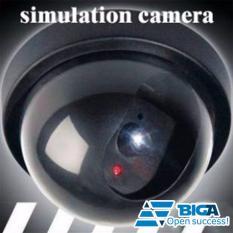 Camera Giả Hỗ Trợ Quản Lí Nhân Viên, Người Trông Trẻ US04642