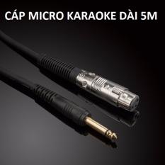 Cáp Micro Karaoke dài 5M JSJ (Cáp 6.5/6.35mm ra đầu Micro Cannon)