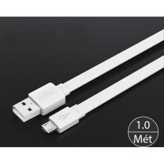 Dây cáp sạc và truyền dữ liệu USB 2.0 sang micro B dạng dẹt dài Ugreen 10394