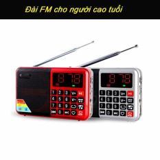 Đài FM, Radio AM, FM , MP3