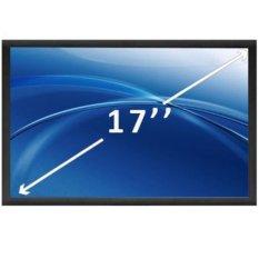 Lcd 17 Wg (2 Bóng) (Dell M17X)(Đen)