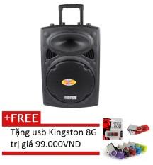 Trang bán Loa kéo Temeisheng DP-107L + Tặng 1 USB Kingston 8GB màu sắc ngẫu nhiên