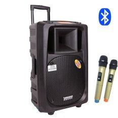 Loa Kéo Temeisheng SL-16 Bluetooth – Micro màu vàng cao cấp