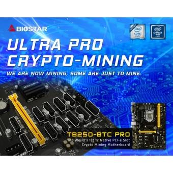 Main BIOSTAR TB250-BTC PRO: The 12-GPU
