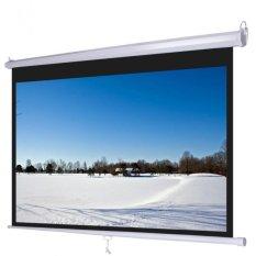 Màn chiếu DALITE treo tường 120 inch (Trắng).
