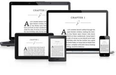 Máy đọc sách Kindle PaperWhite (2017)4GB Wifi (Đen)