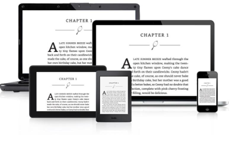 Máy đọc sách Kindle PaperWhite (2015) 4GB Wifi (Đen)