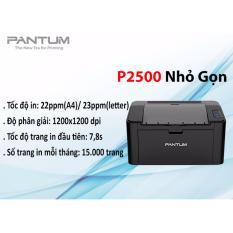 Máy in laser đơn sắc Pantum P2500
