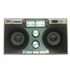 Máy nghe nhạc đa năng SW-206U