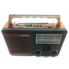 Máy nghe nhạc đa năng SW-888UAR
