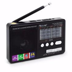 Máy radio chuyên dụng RX có usb thẻ nhớ sạc dự phòng HiKi