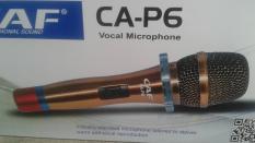 Micro P6