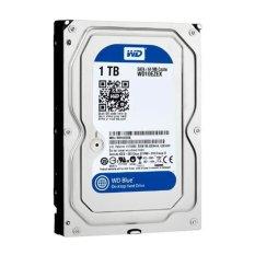 Top 10 Ổ cứng HDD 1TB WD Blue WD10EZEX (Xanh) trong năm