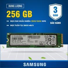 Ổ cứng SSD M2 PCIe Samsung PM961 NVMe 2280 256GB