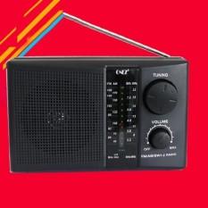 Radio FM, đài cho người già, đài FM