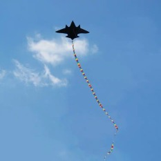 combo 1 tặng 2 ) Diều máy bay B 52 tặng kèm đuôi 10 mét + Tay cầm thả diều 100 mét dây