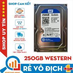 [Nhập LZDEL51 giảm 10% tối đa 200k cho đơn 99k] Ổ cứng 250GB HDD WD Sata III dùng cho máy tính bàn – Bảo hành 1 tháng