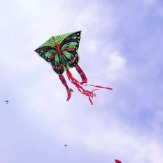 Diều thả hình bướm nhỏ, tặng kèm dây 60m