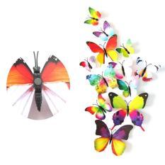 Bộ 12 bướm 3D trang trí nhà có nam châm kích cở đa dạng. Chất liệu bằng nhựa PVC cao cấp.