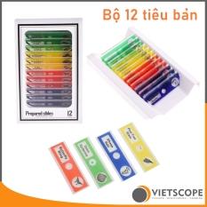 Bộ 12 mẫu tiêu bản đã qua xử lý dành cho kính hiển vi – Lam kính nhựa ABS
