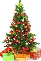 Cây thông noel lá xanh – Cao 90cm