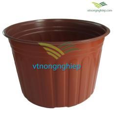 10 Chậu nhựa trồng Hoa CH-30×21 cm, Nâu đỏ đất, Nhựa HDPE, Xuất xứ : Việt Nam