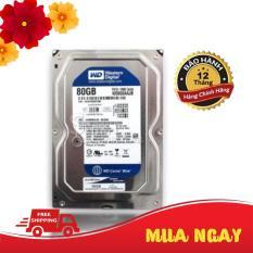 Ổ Cứng máy tính HDD 80GB Western Digital – Hàng Chính Hãng bảo hành 1 đổi 1