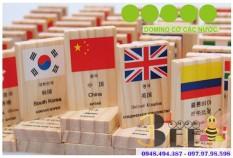 Đồ chơi Gỗ Domino Cờ 100 Quốc Gia Cho Bé