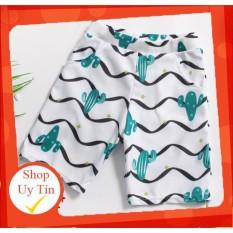✅ Set đồ bơi kèm mũ dành cho bé trai màu xanh lá hoạ tiết xương rồng