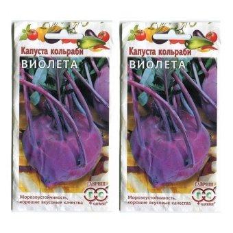 Bộ 2 gói hạt giống Su hào tím
