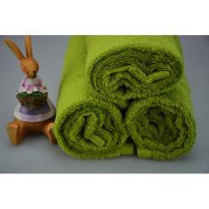 Bộ 2 Khăn tắm cotton cao cấp siêu thấm kháng khuẩn BHOME – 50X100cm